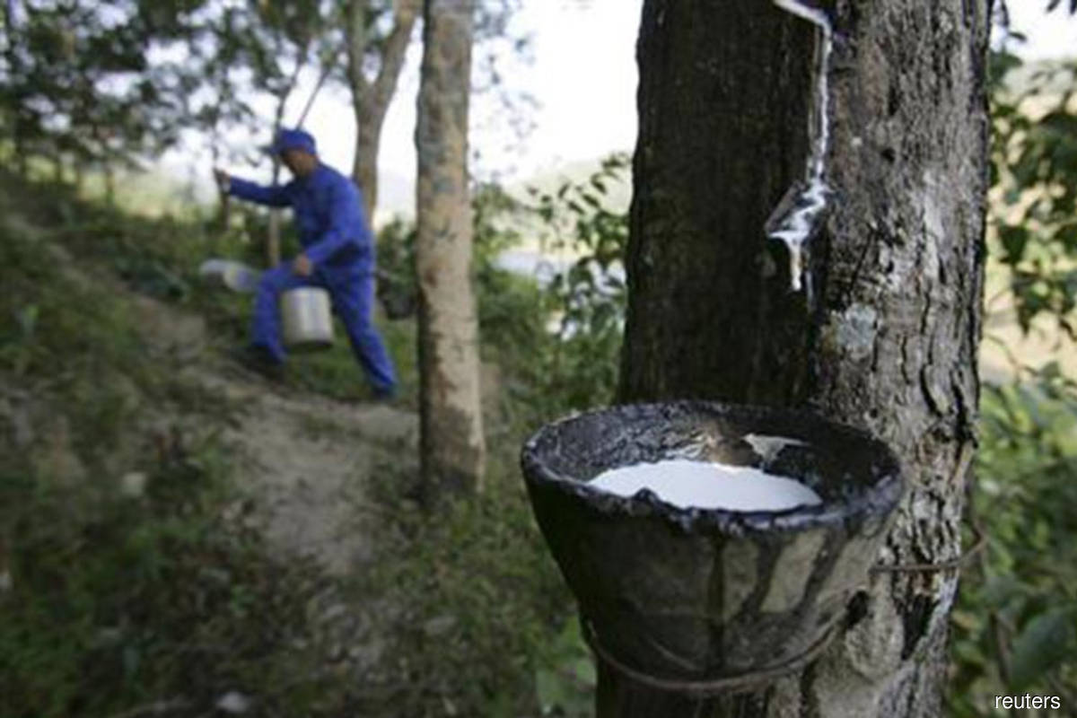 Rubber market closes higher