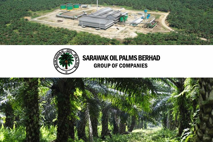 Sarawak Oil Palms suffers net profit nosedive of 84% in 2Q