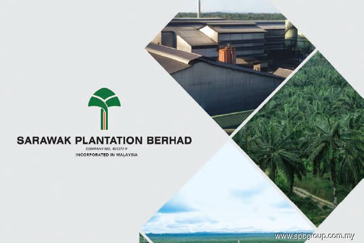 Sarawak Plantation expected to turn around