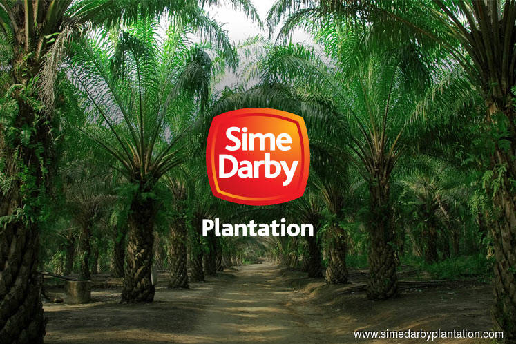 Sime Darby Plantation's 1Q net profit soars more than 6 times on land disposal gain