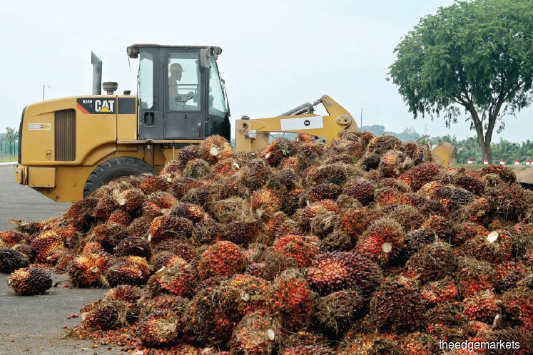 Crunch time for Sime Darby Plantation as debt matures