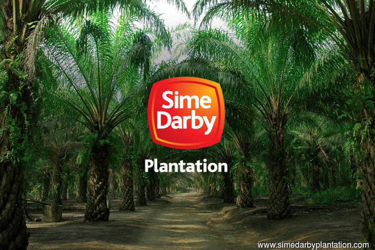 Sime Darby Plantation banks on downstream business for growth