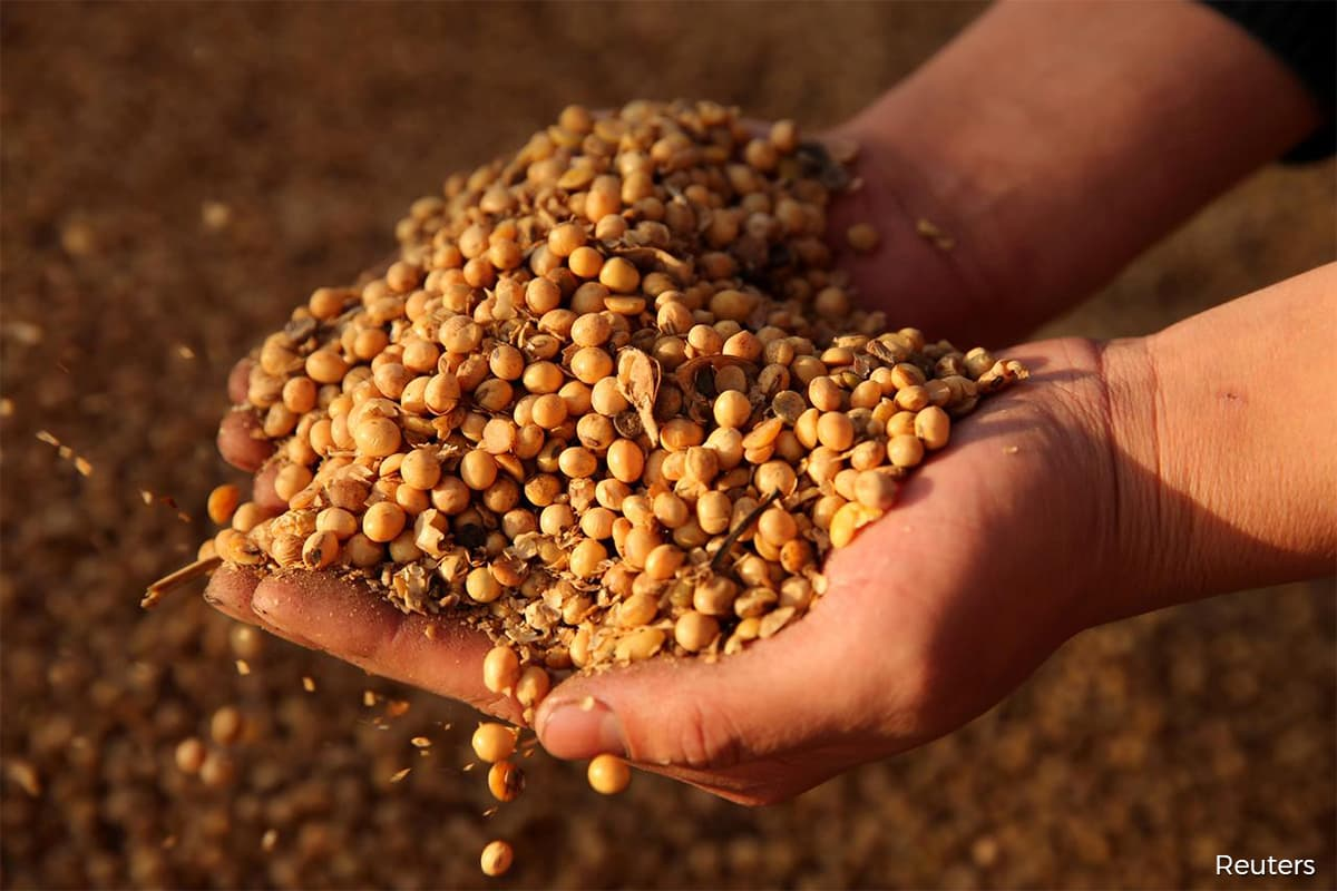 Soy futures hit highest in over four years on strong demand, tight supply