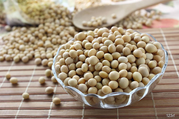 Grains: Wheat, soybeans hold firm as coronavirus raises supply risks