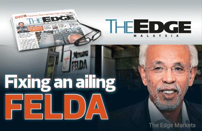 Fixing an ailing FELDA