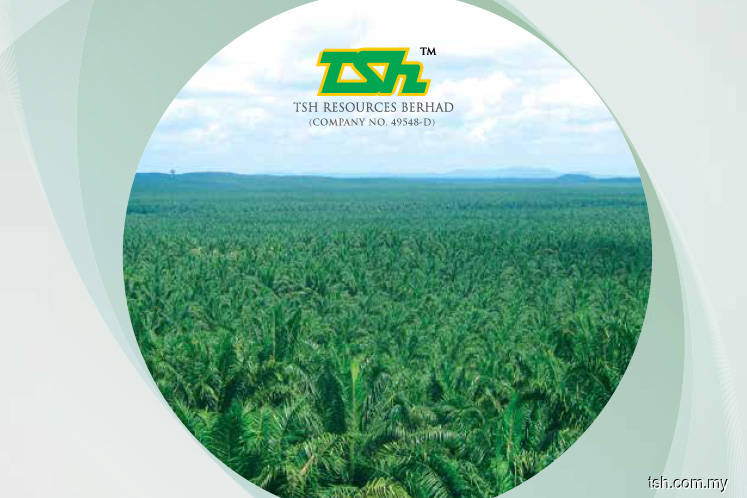 TSH Resources 1Q net profit down 40% on lower CPO, PK prices