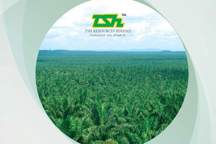 TSH Resources sells two Indonesian plantation units to KLK to pay debts