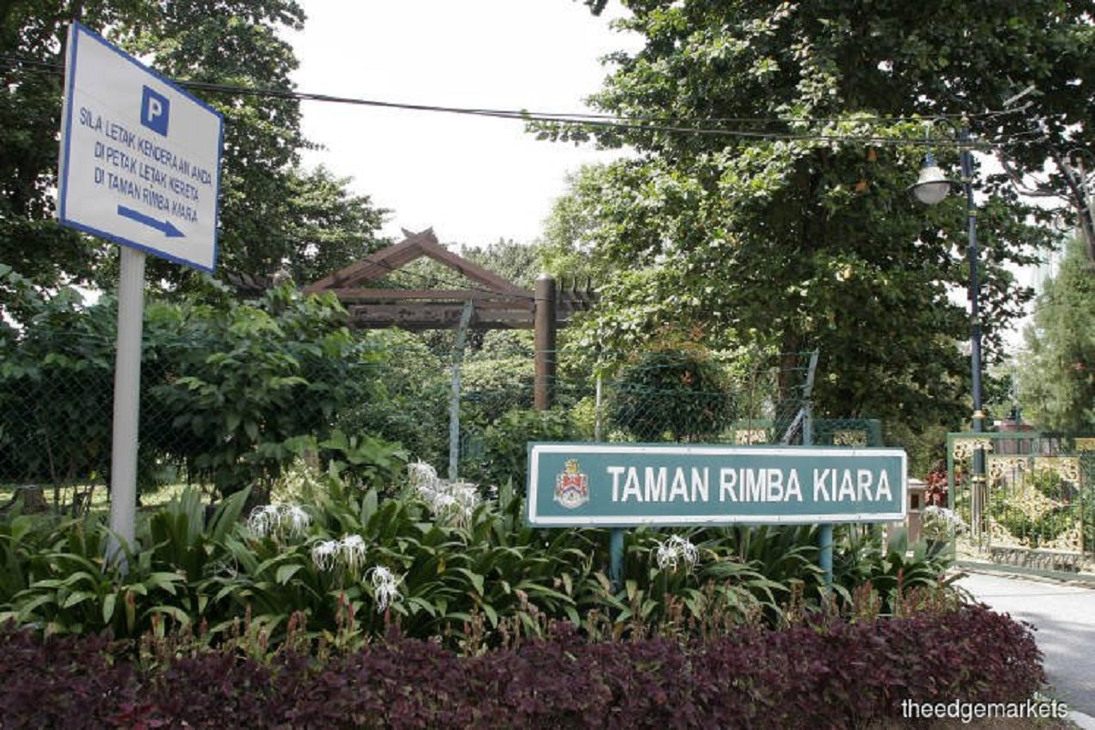 Appeal court quashes Taman Rimba Kiara development order