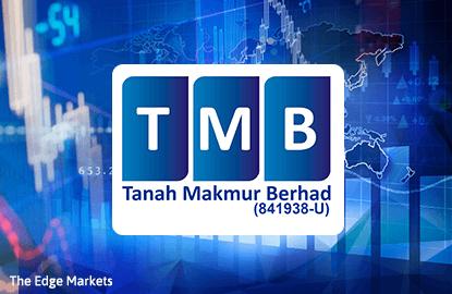 Stock With Momentum: Tanah Makmur