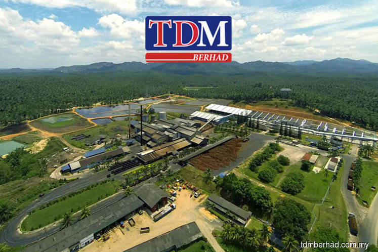 TDM shares hit over one-year high amid lower palm oil stockpiles
