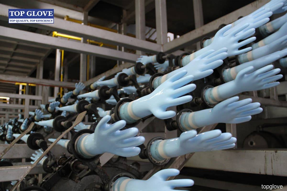 Glove stocks recoup some losses after yesterday's selldown