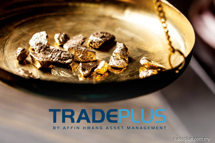 Tradeplus Shariah Gold Tracker up 0.88% amidst subdued market