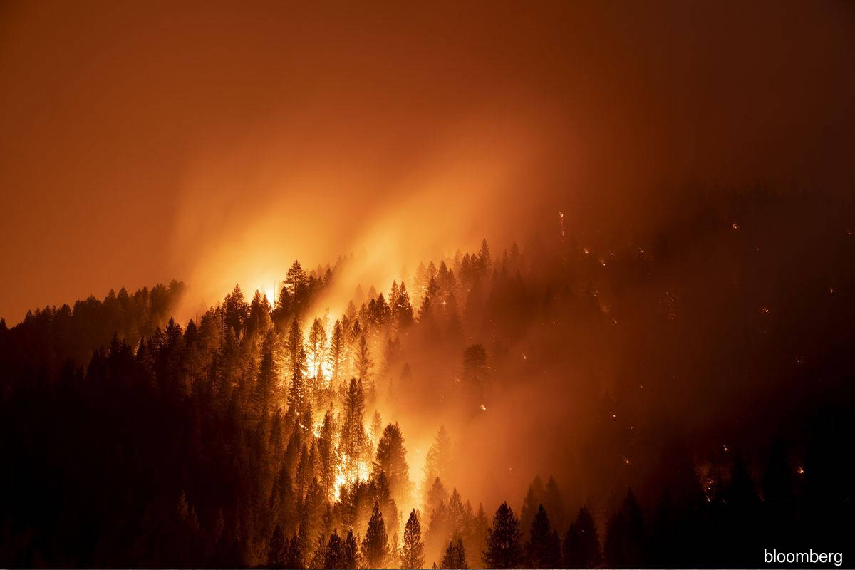 PG&E sees 'no basis' for criminal charge for Dixie Fire