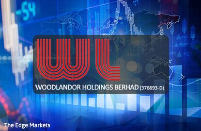 Stock With Momentum: Woodlandor Holdings