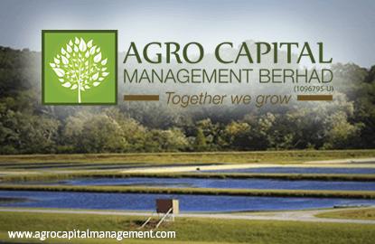 Agro capital методы зароботка на форексе