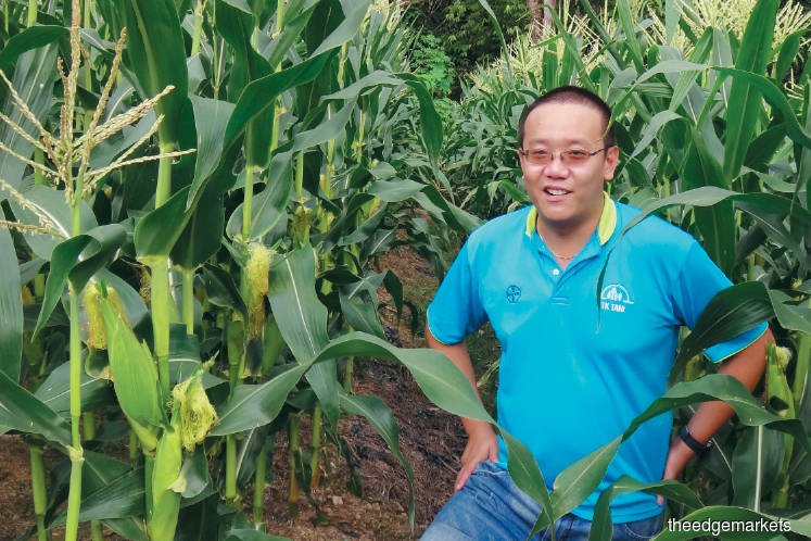 Responsible Business: The professional farmer from the Land
