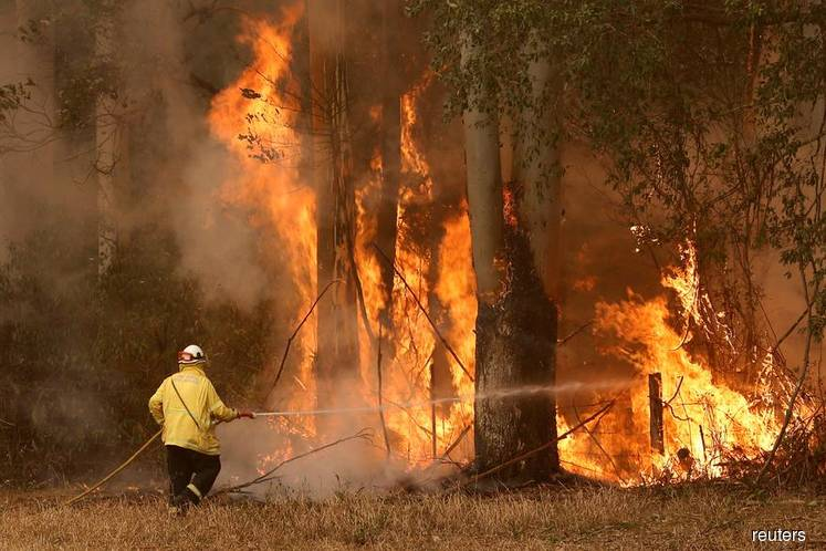 Aircraft fight Sydney blaze as Australians reel from bushfires