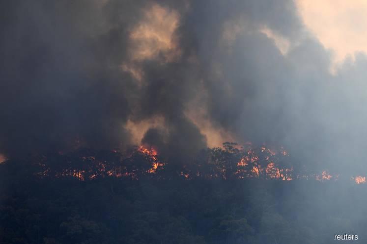 Lack of forecast rains to prolong Australian bushfires threat