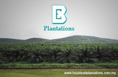 Boustead Plantations 2Q net profit jumps 413%, declares 5 sen dividend