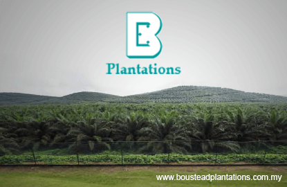 Boustead Plantations次季净利飙413% 派息5仙