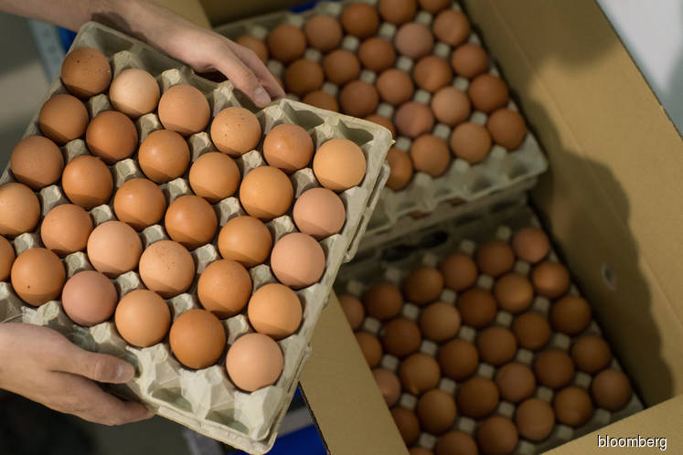 There's a multibillion-dollar race to replace the chicken egg