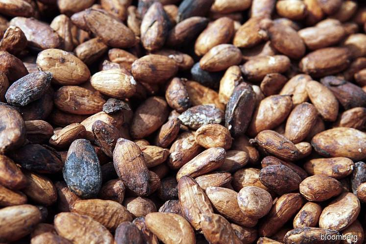 Asia Q1 cocoa grind up 9.5% y/y at 208,388 T — association