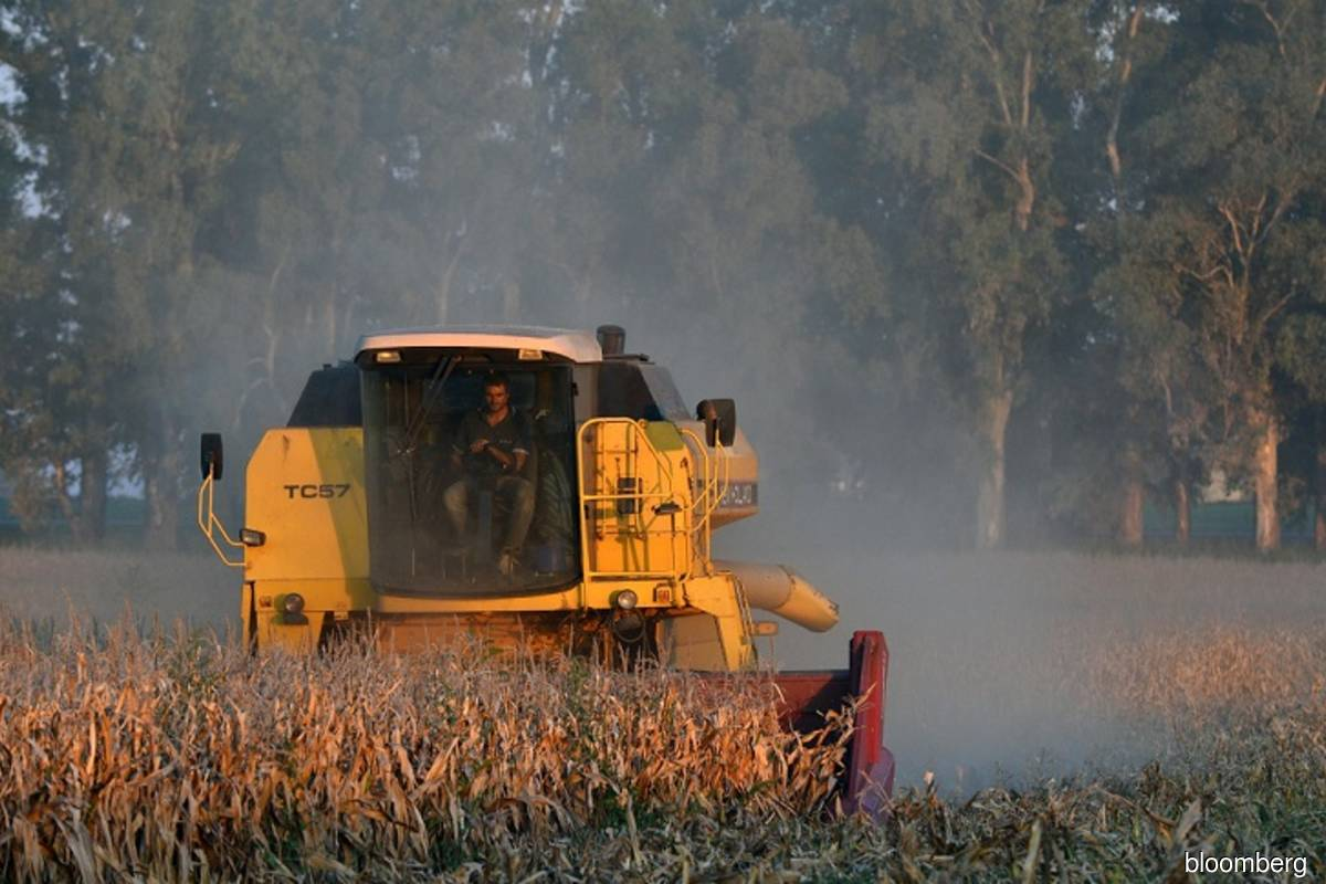 US farmers to plant less corn, soybean acreage than expected – USDA