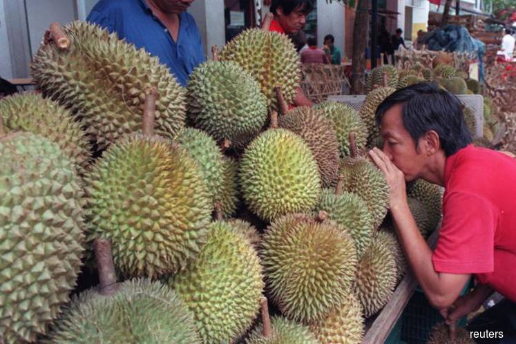China's love of stinky durian 'next big threat' to Malaysian rainforest