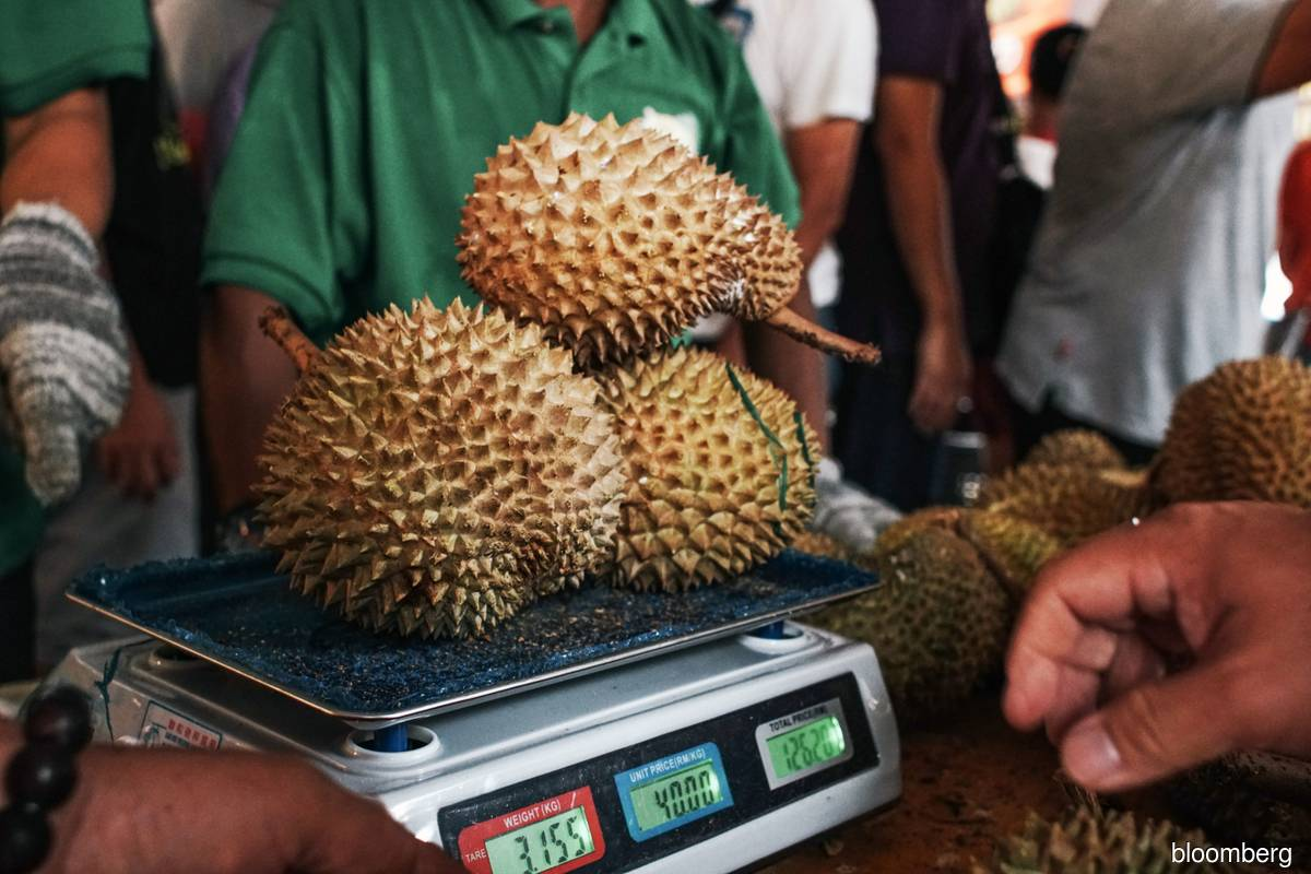Four tonnes of durians sold at RM1/kg snapped up in less than three hours