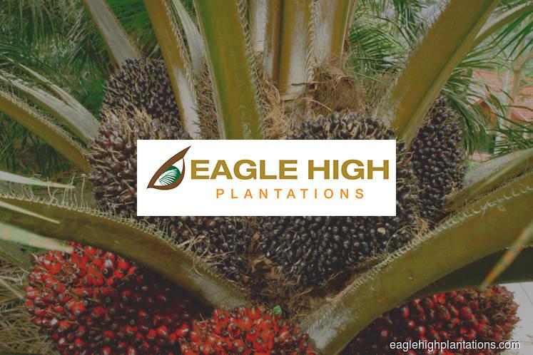 'Eagle High gets RSPO cert for Kumai plantation'