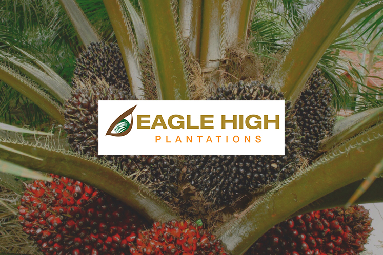 Cover Story: The Eagle High conundrum