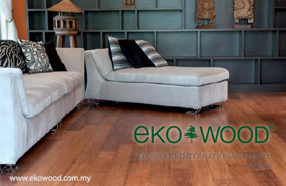 TSH says to privatise Ekowood 'to improve its financial performance'