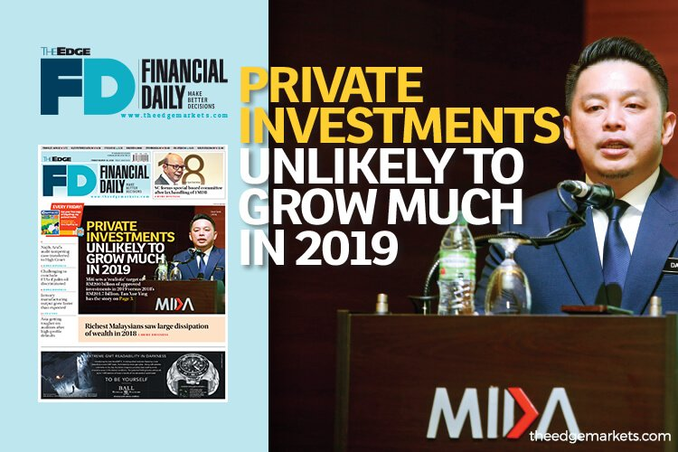 Private investments unlikely to grow much in 2019