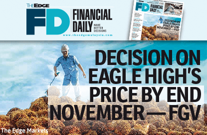 Decision on Eagle High's price by November — FGV