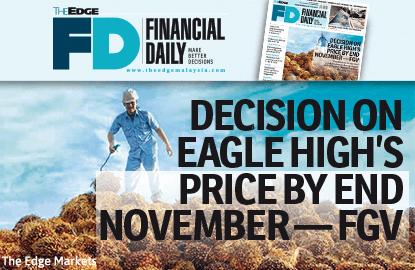 FGV:月内决定Eagle High收购价