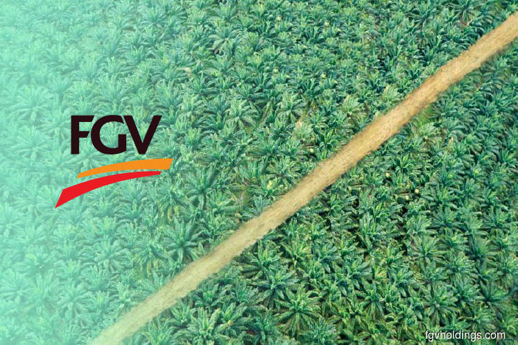 RSPO certification on FGV's Serting Complex reinstated