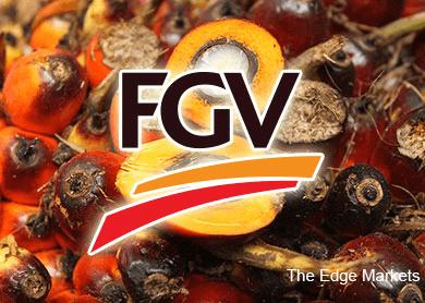 FGV末季净利下跌 营业额扬升