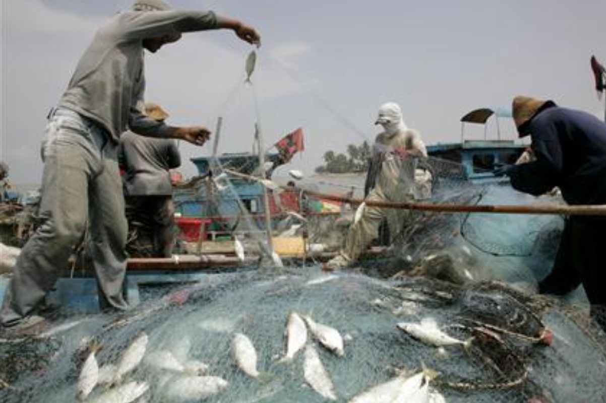 PSR project will have impact on national fisheries industry