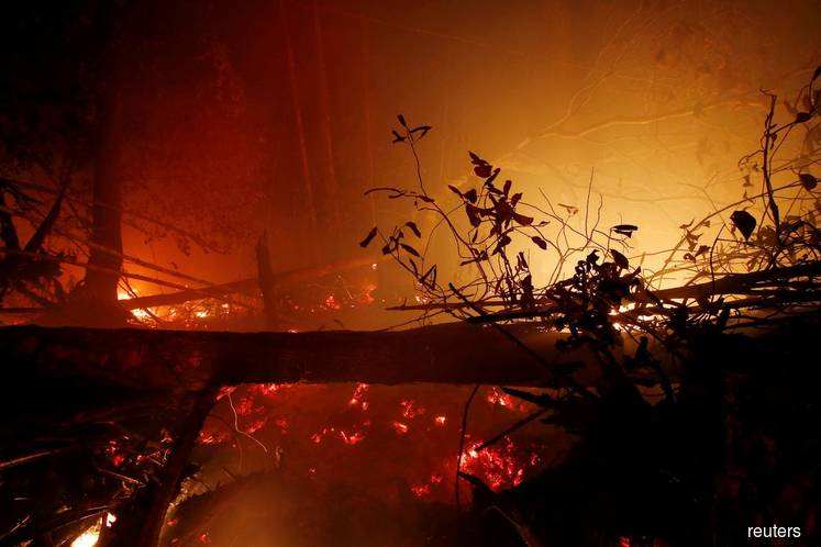 World Bank says Indonesia forest fires cost US$5.2b in economic losses
