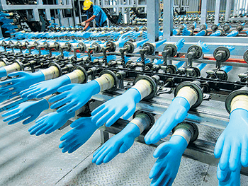 Global rubber glove demand expected to grow 8% to 10%