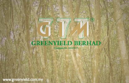 净利表现亮眼和宣布派息 Greenyield引发购兴