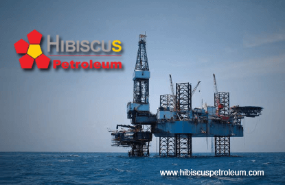 hibiscus-petroleum