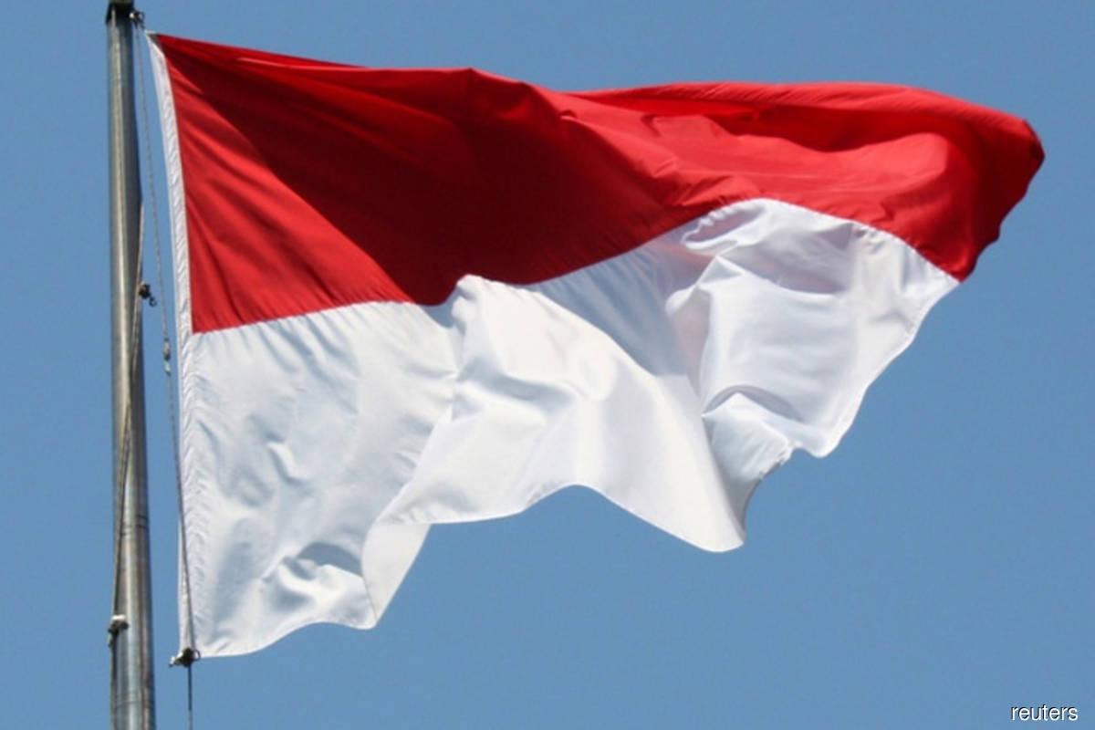 Indonesia imposes 10% VAT on Facebook, Disney, Tiktok -tax office