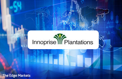 Stock With Momentum: Innoprise Plantations