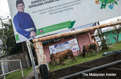 Kota Belud the 'cowboy town' with two federal ministers