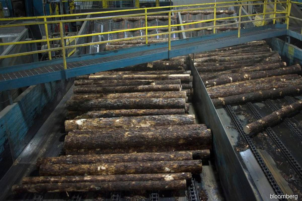 Resolute Forest spending US$50m to expand lumber output