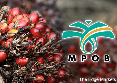 MPOB: Malaysia's February palm oil inventory, exports fall