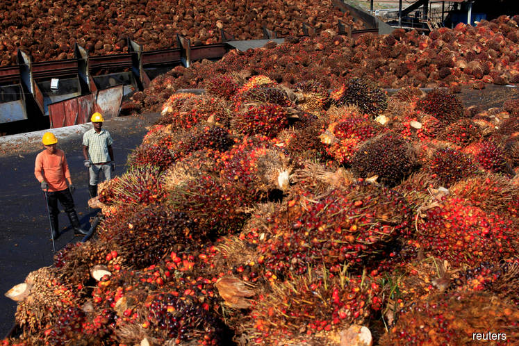 Palm oil group urges Malaysia to shun trade with France, Norway
