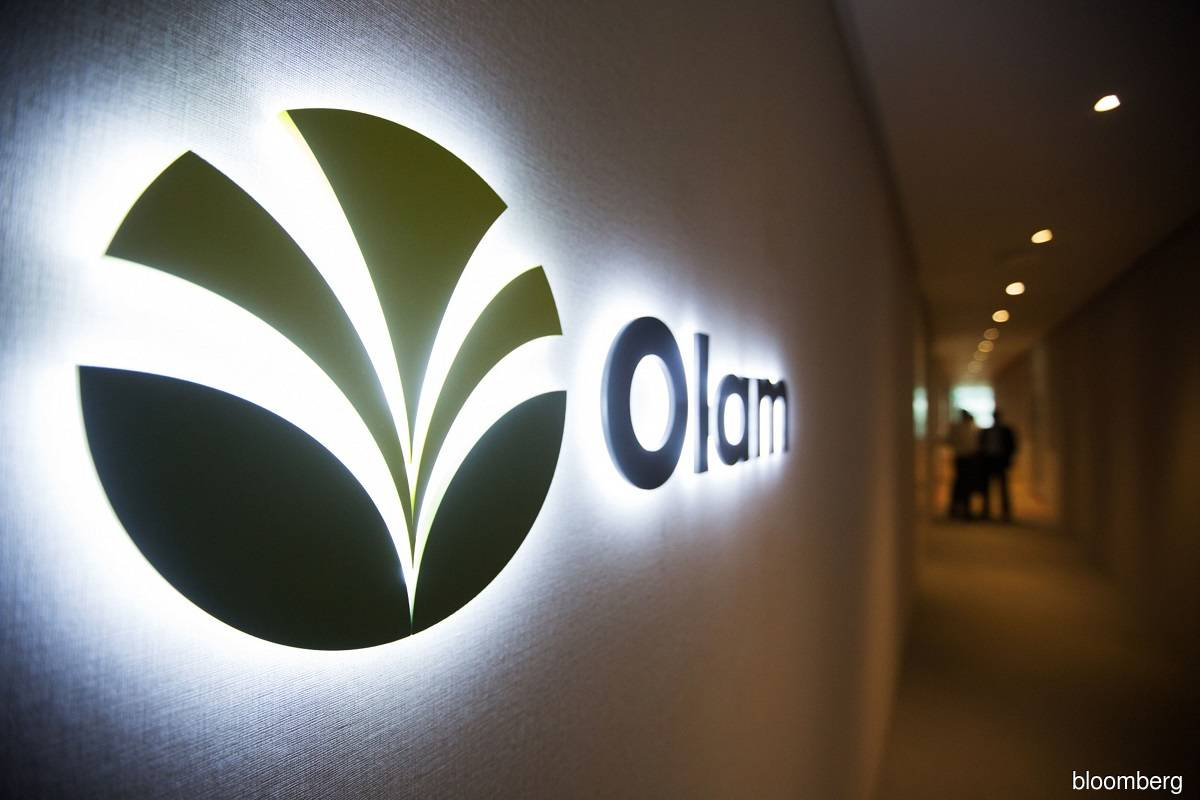 Olam looking to raise about £2 billion via food ingredients London IPO — sources
