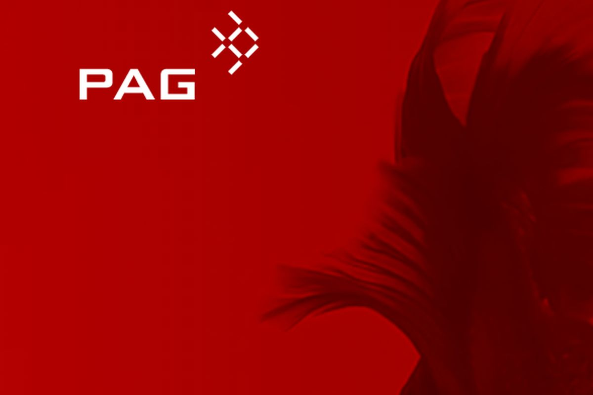 PAG plans US$10 bil merger, offshore IPO of Chinese gases assets